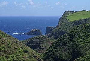 Maui Mike 131